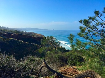 View from GUY FLEMING TRAIL in the Torrey Pines State Natural Reserve. Mandatory Photo Credit David Frerker