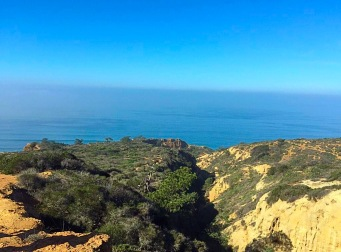 View of Razor Point Trail from South Fork Trail in the Torrey Pines State Natural Reserve. Mandatory Photo Credit David Frerker.
