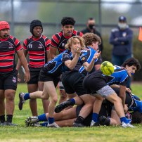 LaJollaRugby5