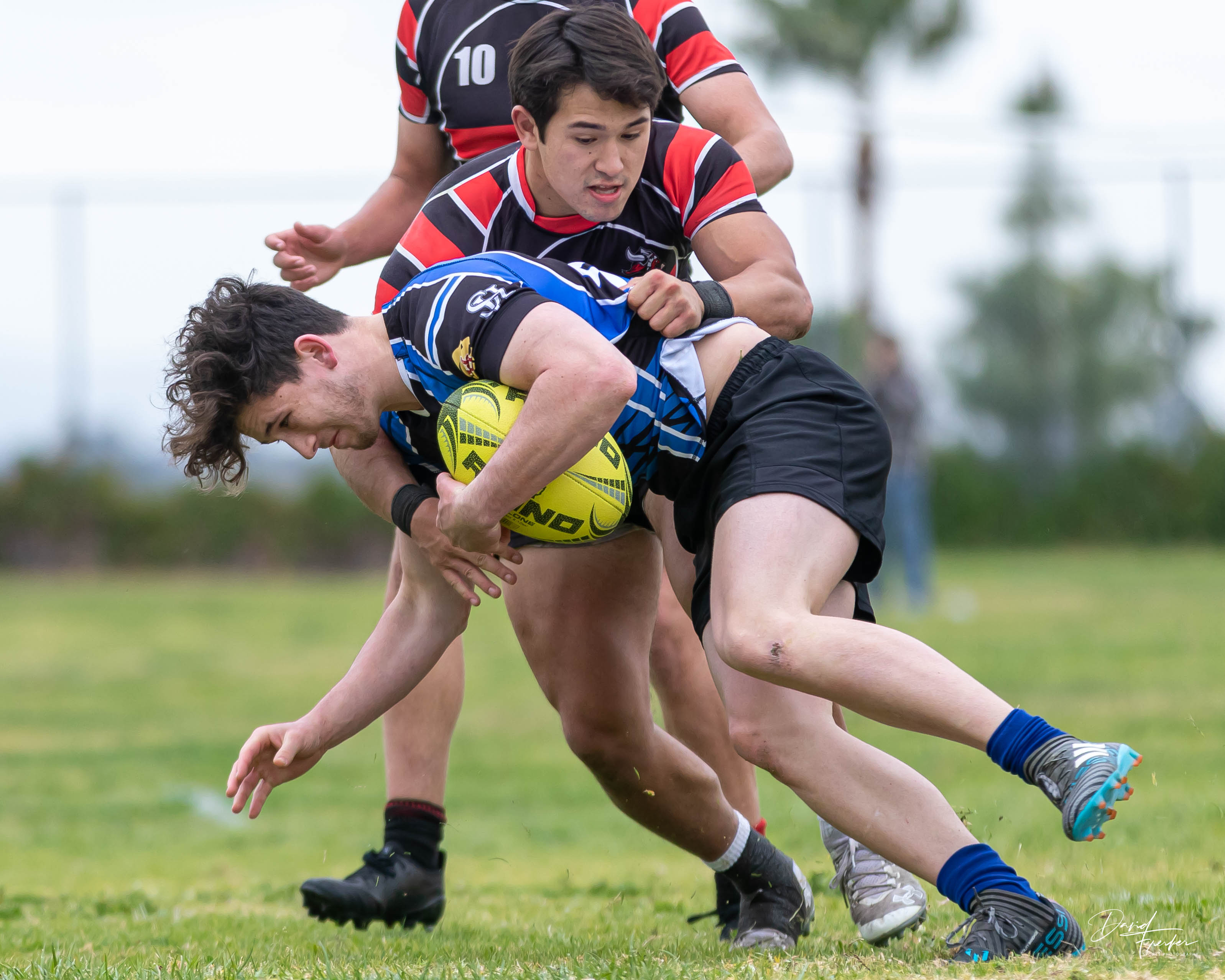 LaJollaRugby79